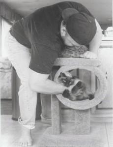 (Kitty's Revenge!)