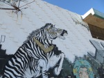 Zebra's happen!