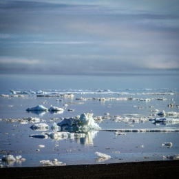 Sea ice (Barrow)