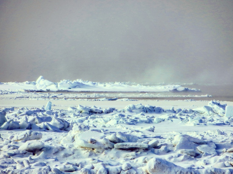 Unusually open water in mid winter (Barrow)
