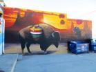 Back of the Buffalo Echange