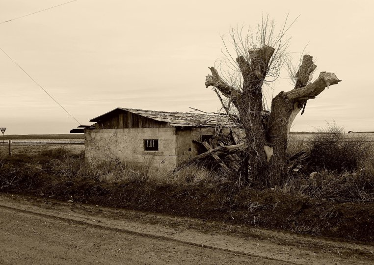 Old House (Moni Pic)