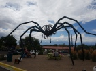 Do not climb on the spider!