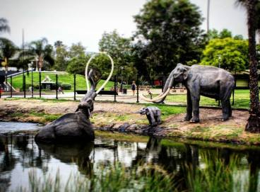 Tragedy at La Brea Tar Pits