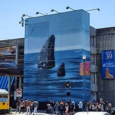 Whaling Wall in San Francisco