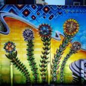 Psychodelic Flowers