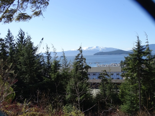 This was Auke Bay as seen from the University of Alaska, Southeast (taken through a chain link fence)